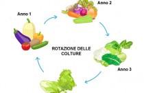 rotazione-culture-1200